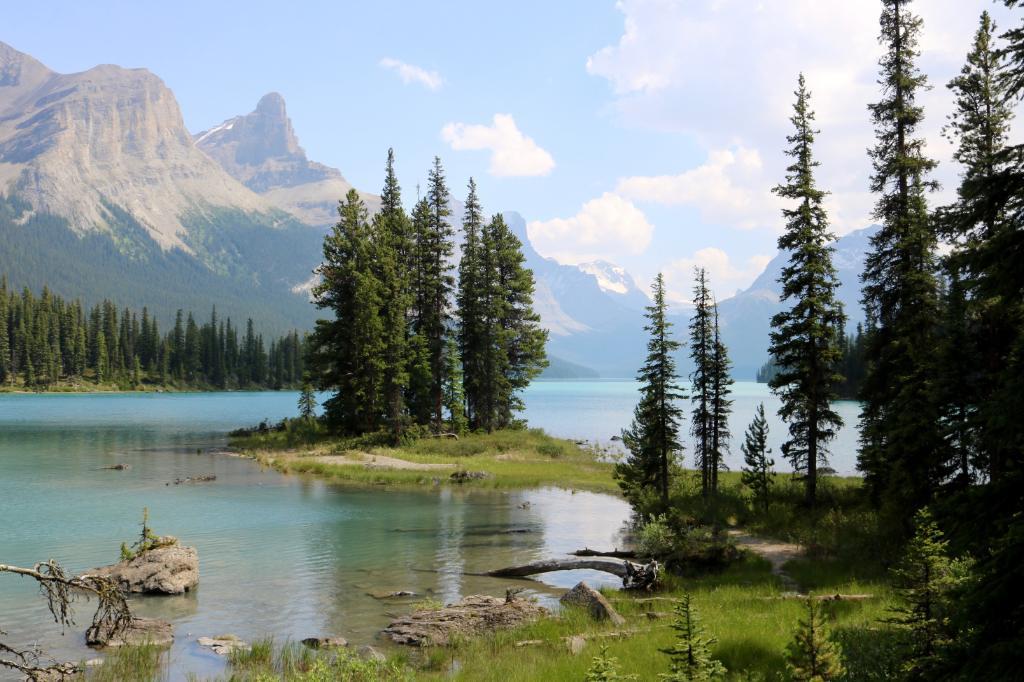 Canada Alberta Jasper eigen foto